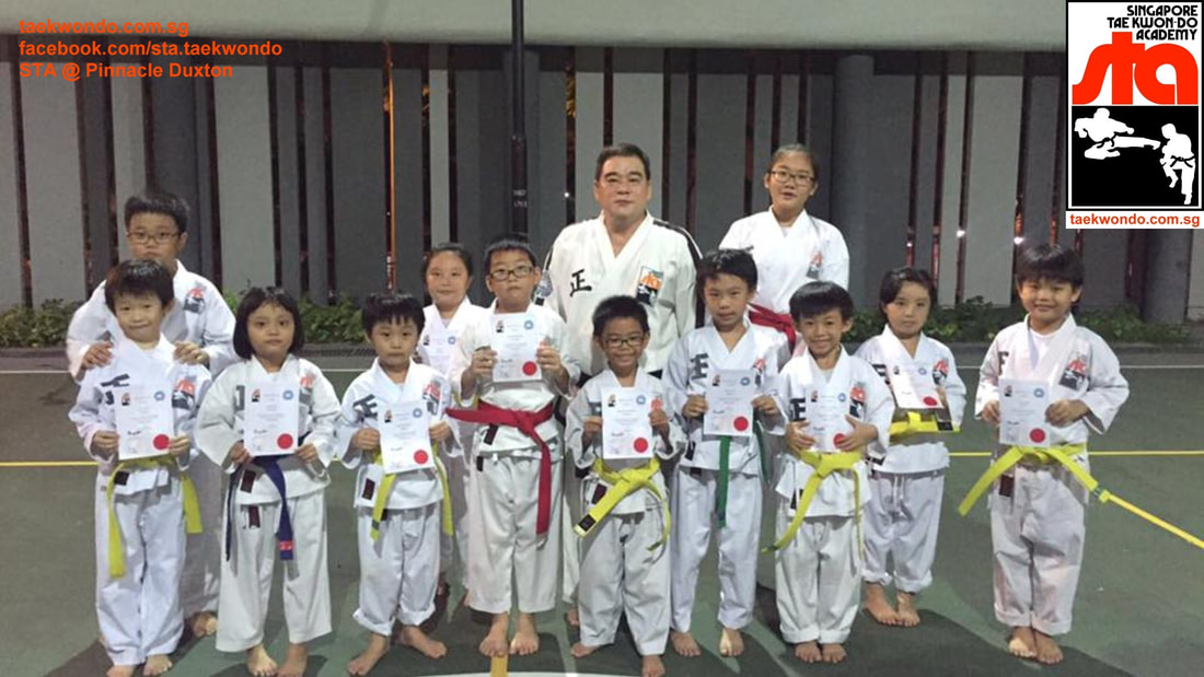 Pinnacle Duxton Cantonment Road City Taekwondo Master Albert Ong